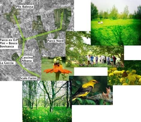 Connessioni ecologiche 2
